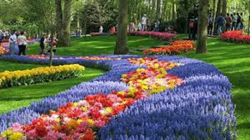 Blomsterresa till Holland 19 april 2021.